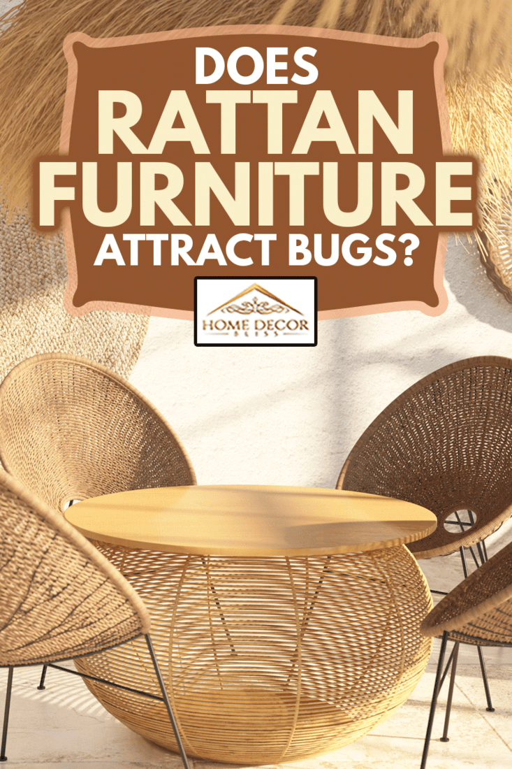 Interior of a modern living room with wicker furniture and rattan and straw décor. Round dining table. Ethnic style, Does Rattan Furniture Attract Bugs?