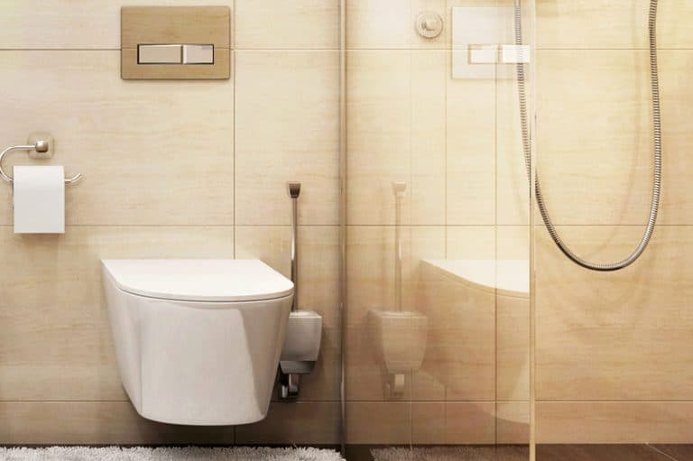 Large bathroom with a roll of tissue and a bidet, Do Bidet Toilets Need Electricity?