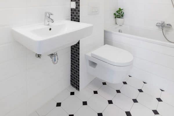 11 Black And White Tile Bathroom Floor Ideas