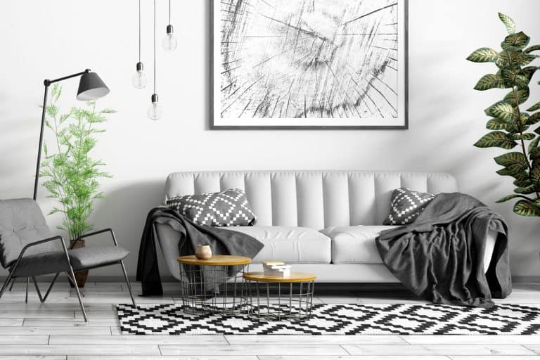 Modern interior design of scandinavian, living room with grey sofa, black armchair, coffee tables and plant, How Many Floor Lamps Can Be Placed In A Living Room?