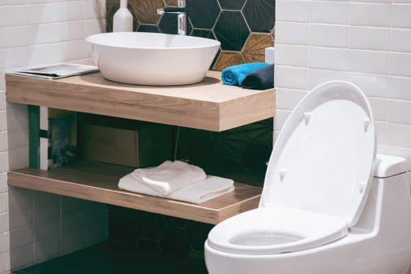 Do Toilets Come With Seats? [Popular Brands Explored]