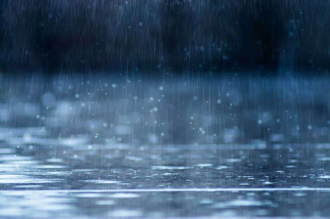 Rain fall on the ground in rainy season