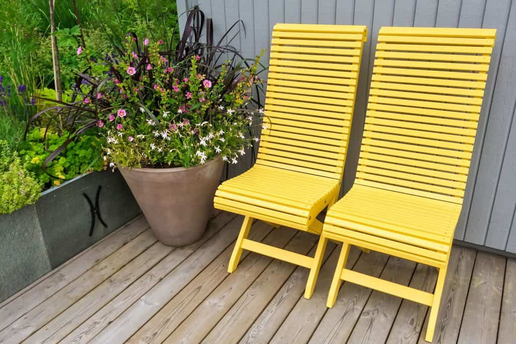 Two yellow colored porch chairs with a plant on the side