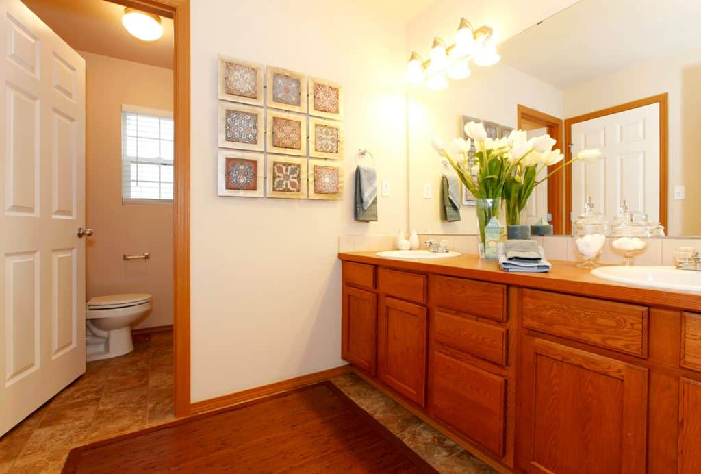 View of the bathroom cabinets and toilet
