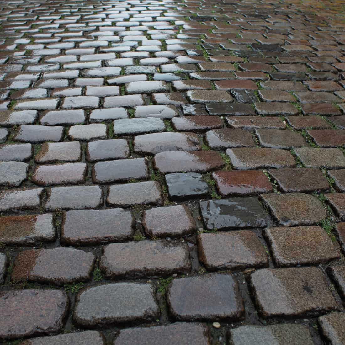 Wet cobblestone pavement