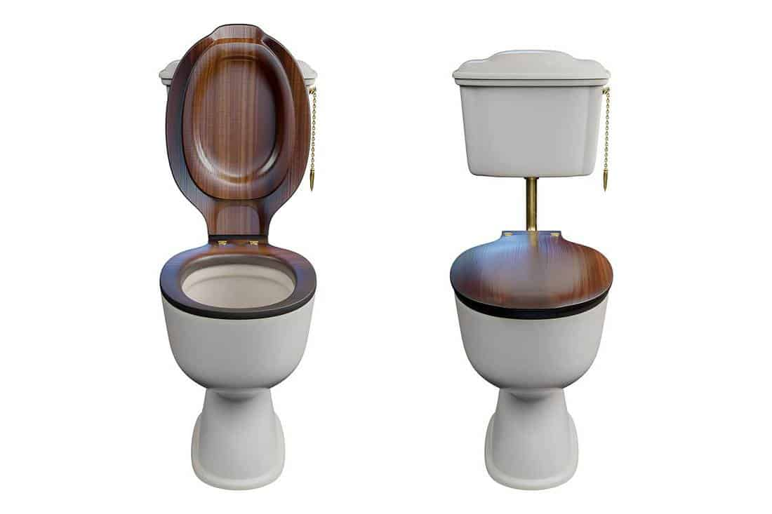 White ceramics toilet bowl with low-level cistern and wooden lid top, isolated on white background with clipping paths
