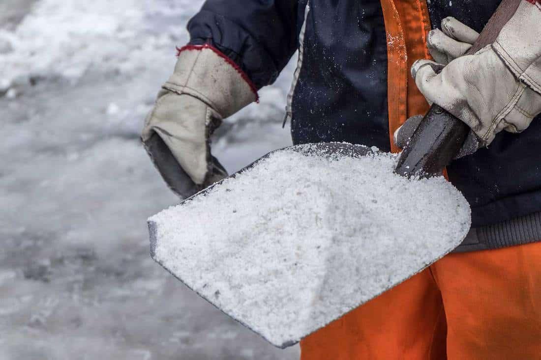 Worker spreading salt on icy sidewalk