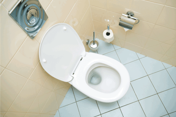 Do Toilets Lose Flushing Power Over Time? [And How To Increase Flush Pressure!]