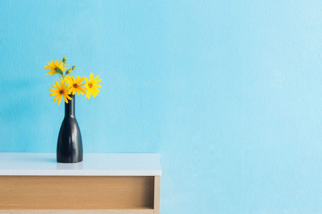 A Jerusalem artichoke flower placed on black vase inside a blue colored living room