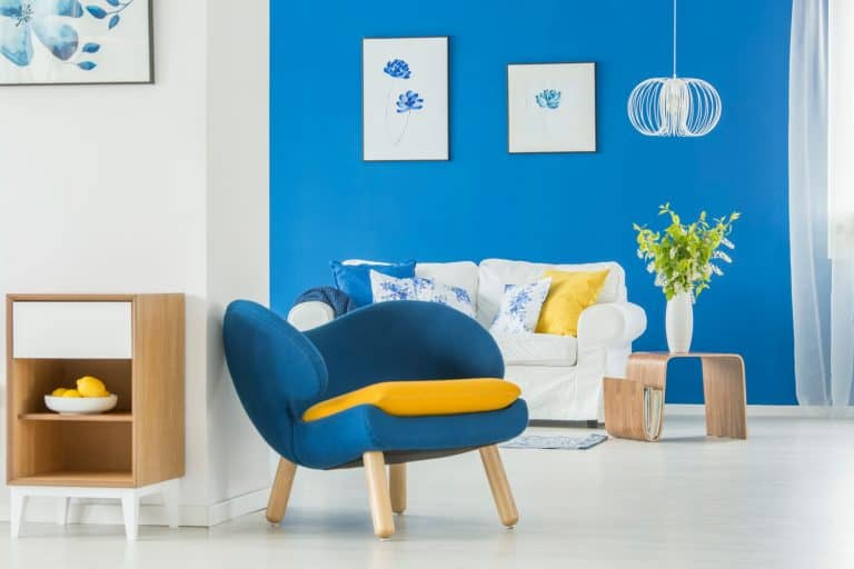 A lively and beautiful white living room with a blue accent wall, white loveseat sofa, and a small blue accent chair, How To Decorate A Basement Apartment [5 Wonderful Tips]