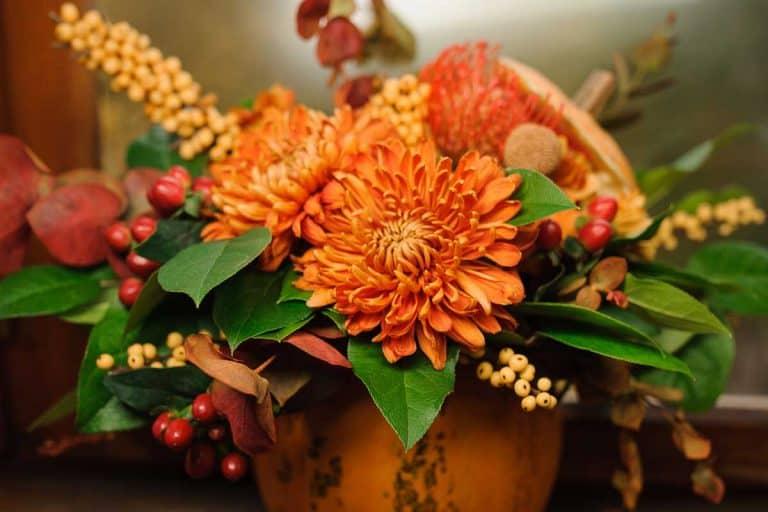 A pumpkin with beautiful and bright autumn flowers inside, standing on the brown wooden window sill, 15 Stunning Orange Flower Arrangement Ideas