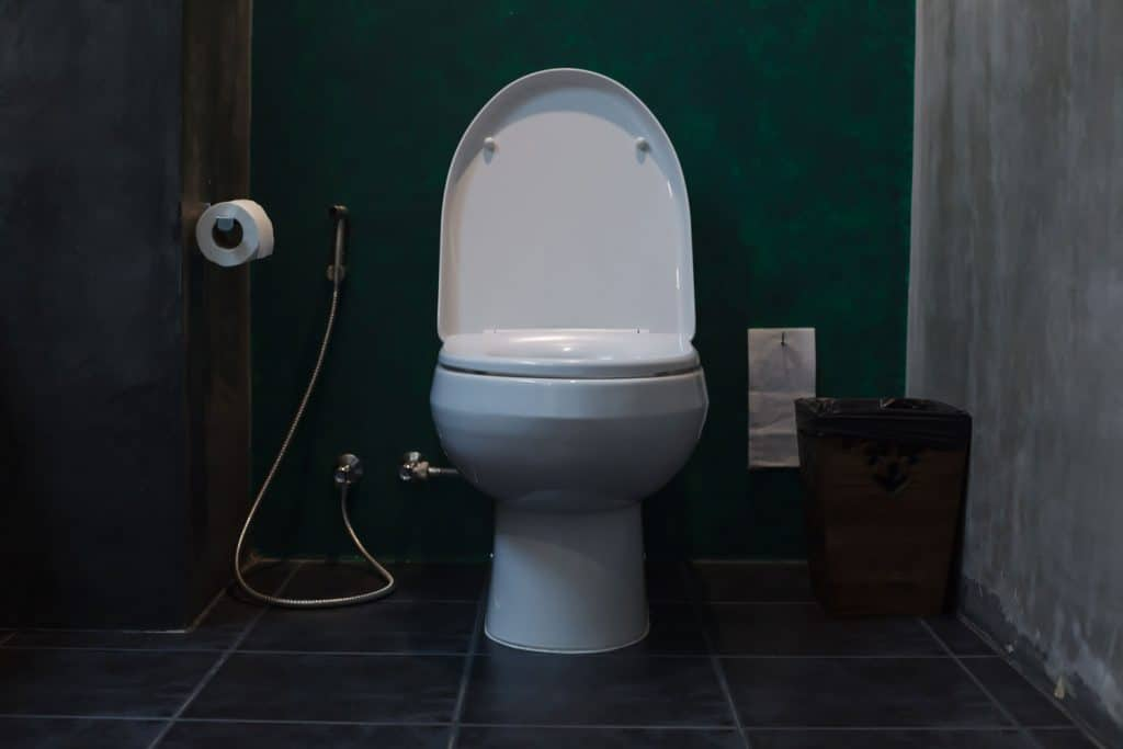 A small toilet with a dark design inspired bathroom
