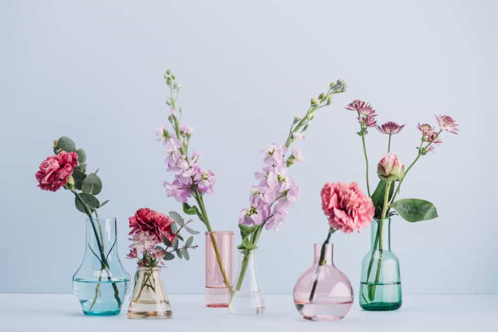 Beautiful pastel colored flowers perfectly arranged on a pastel background