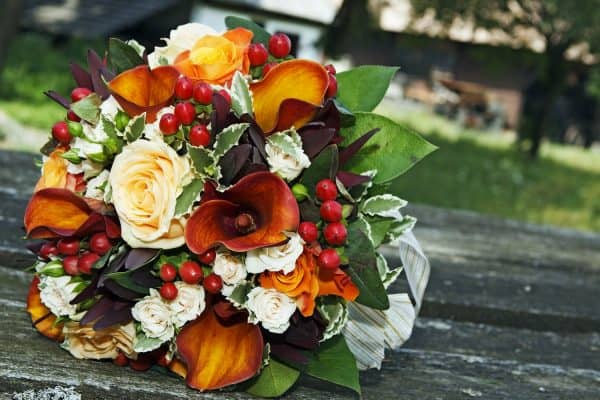 Read more about the article 15 Awesome Lily Flower Arrangements