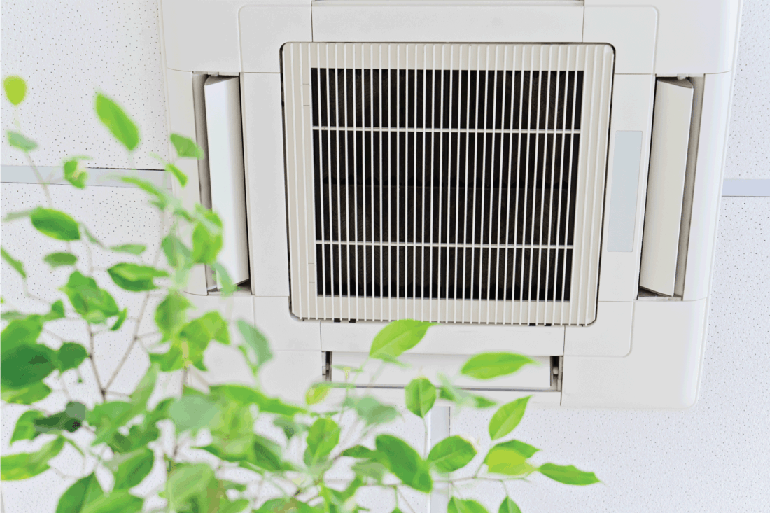 Ceiling air conditioner in modern office or at home with green ficus plant leaves an idea of clean air