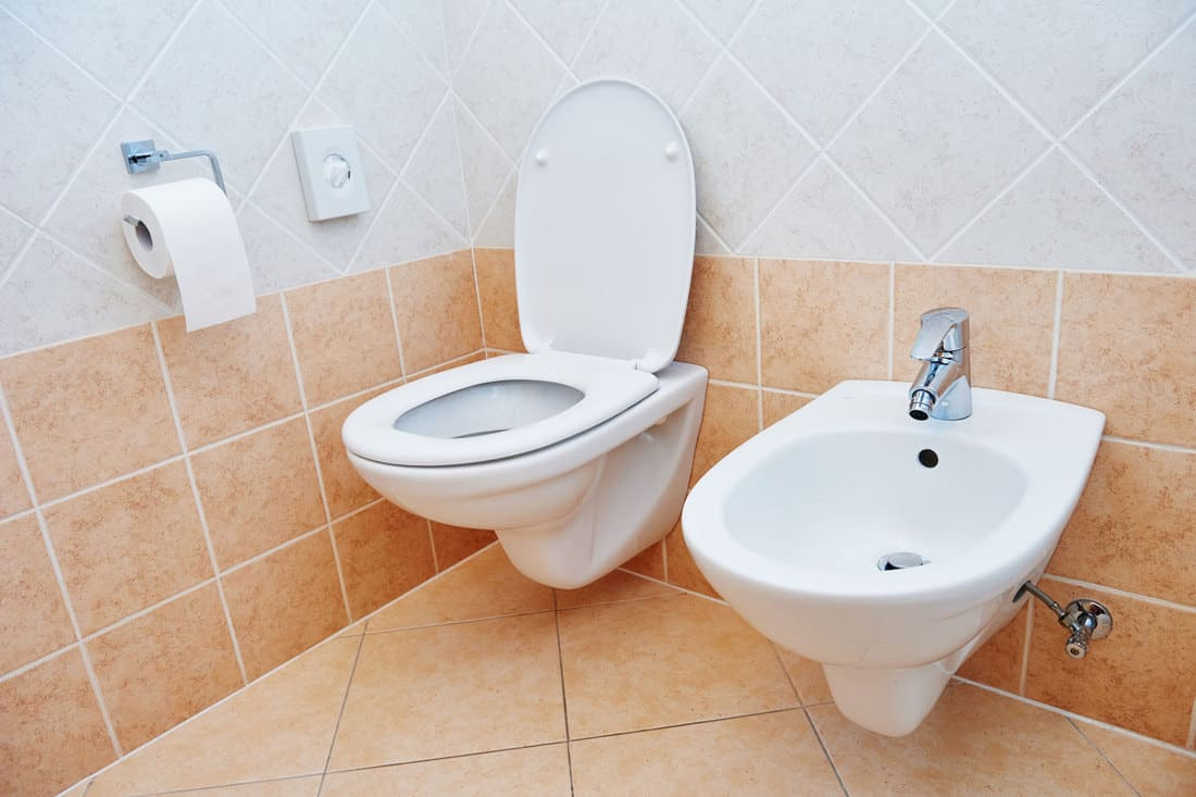 Clean toilet sanitary sink or bidet bowl with open lid unit in bathroom