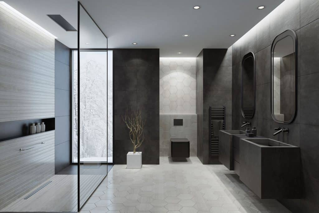Contemporary interior of a great masters bathroom with black walls, glass shower wall, and a small plant on the side