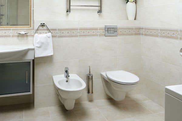 Read more about the article Can You Add A Bidet To An Existing Toilet? [And How To Do So!]