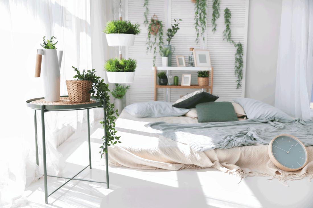 Light modern scandinavian bedroom interrior with bed, pillows, plaids, shelves, green plants in baskets