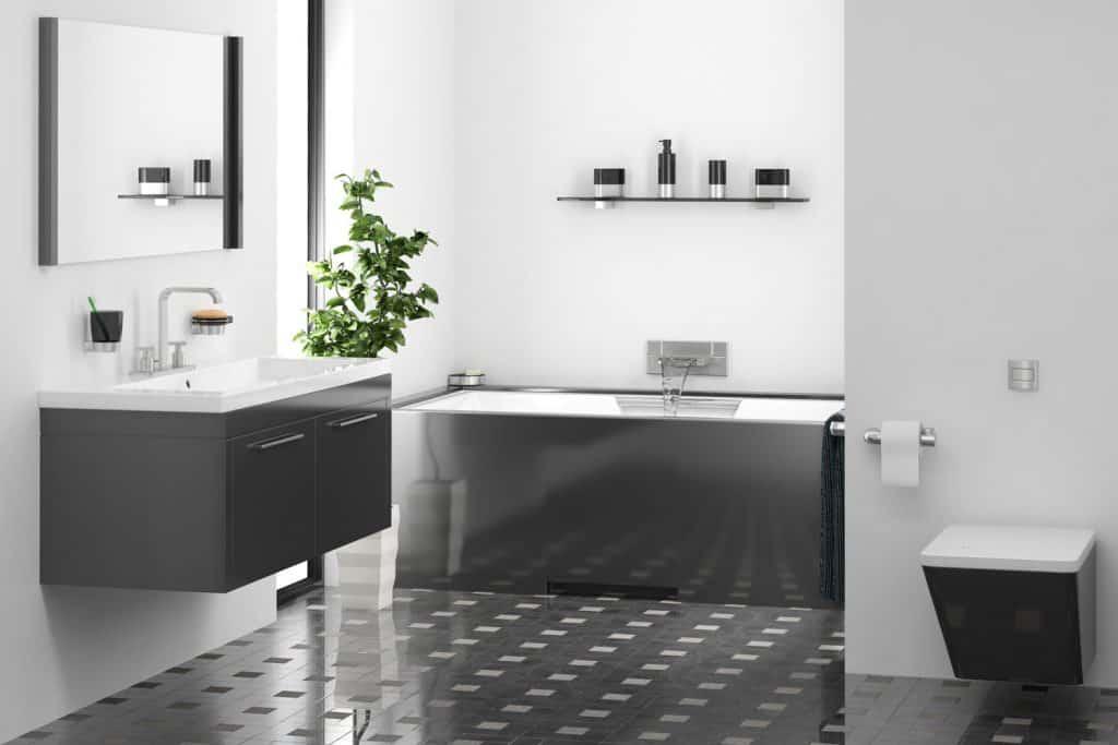 Modern Bathroom with Black Vanity