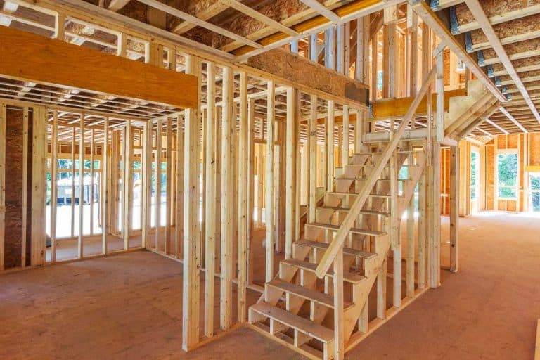 New house construction interior framing, How To Get Rid Of Mold On Wood Framing -- And How To Prevent It