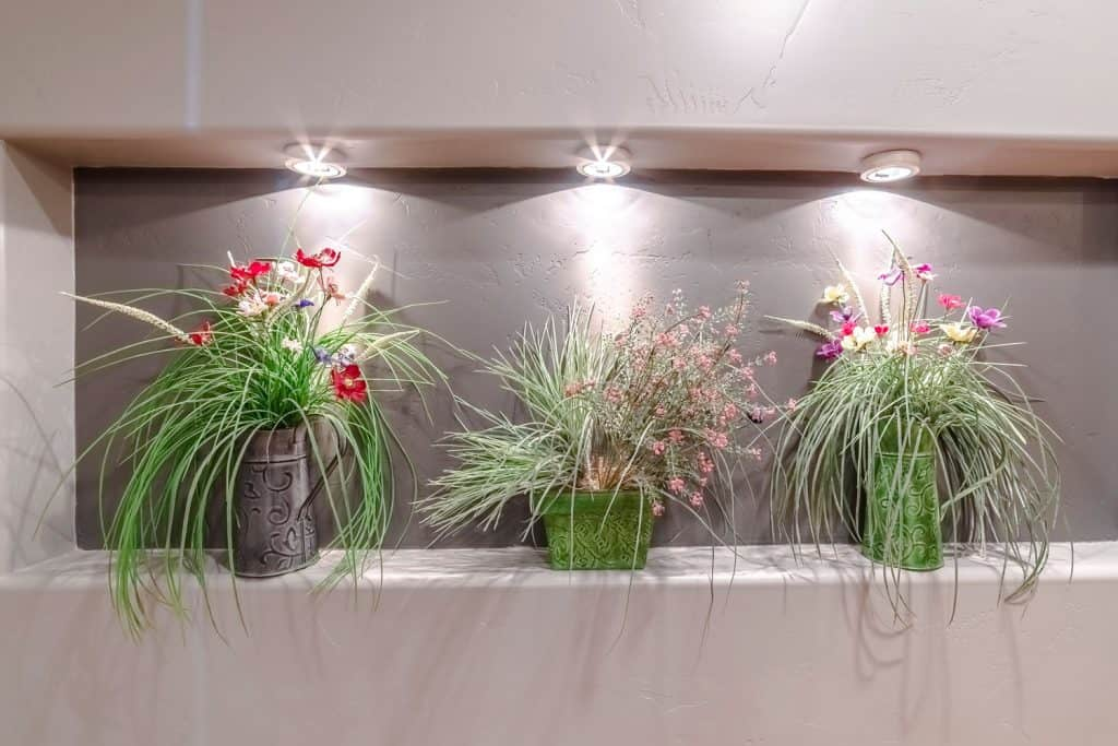 Three sets of stunning arrangement of flowers on a small garden ledge