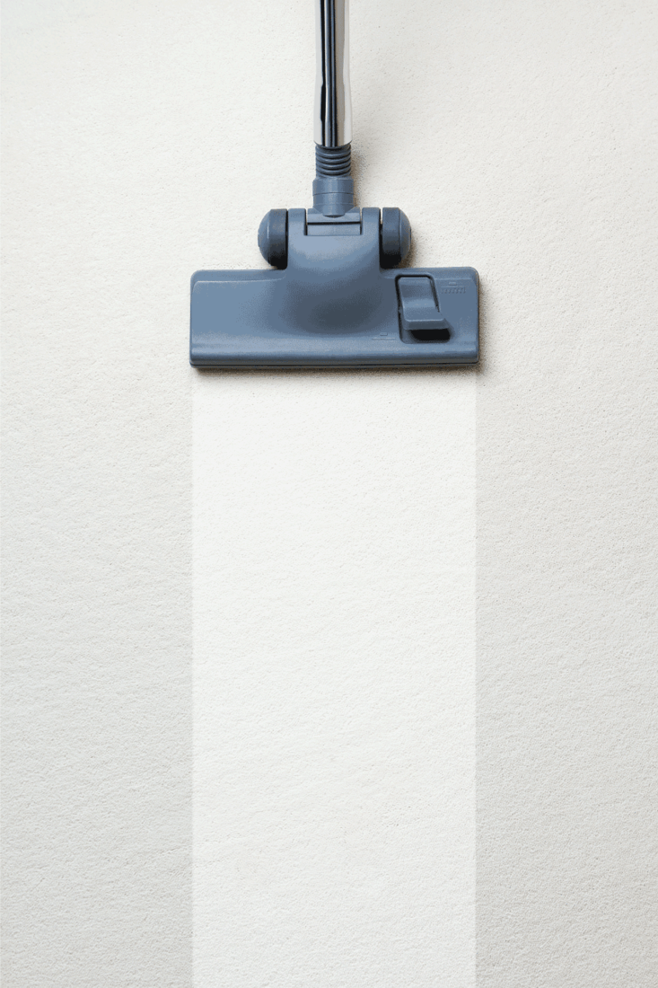 Vacuum cleaner on carpet. How To Use Bissell Pet Stain Eraser [A Complete Guide]
