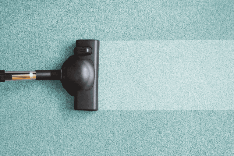 vacuum cleaner head moving across a blue carpet leaving clean area. How To Use Bissell Pet Stain Eraser [A Complete Guide]