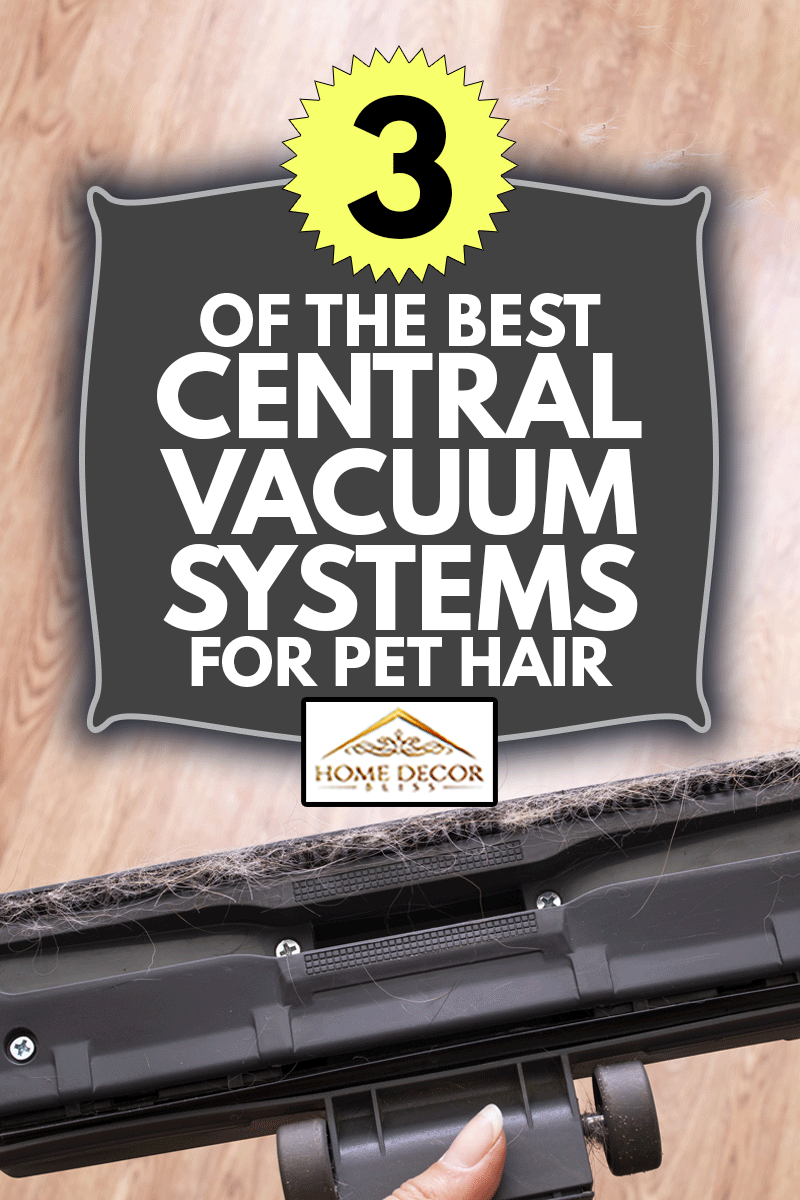Pet hair on the brush of the vacuum cleaner close up, 3 Of The Best Central Vacuum Systems For Pet Hair