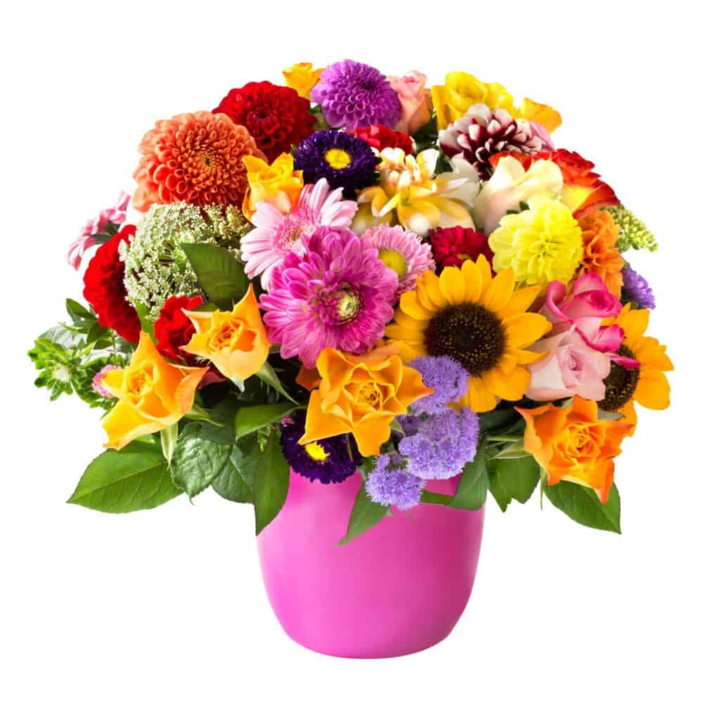 A bouquet of different varieties of flowers perfectly arranged on a pink vase on a white background