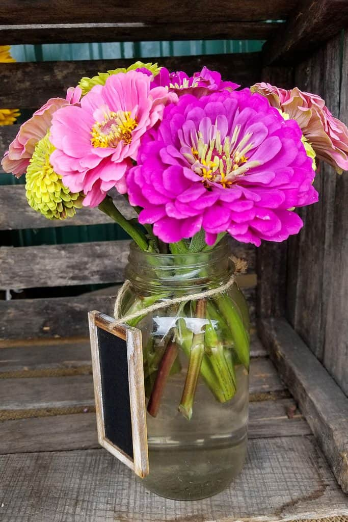 A small vase with violet gerbera flowers on a glass jar
