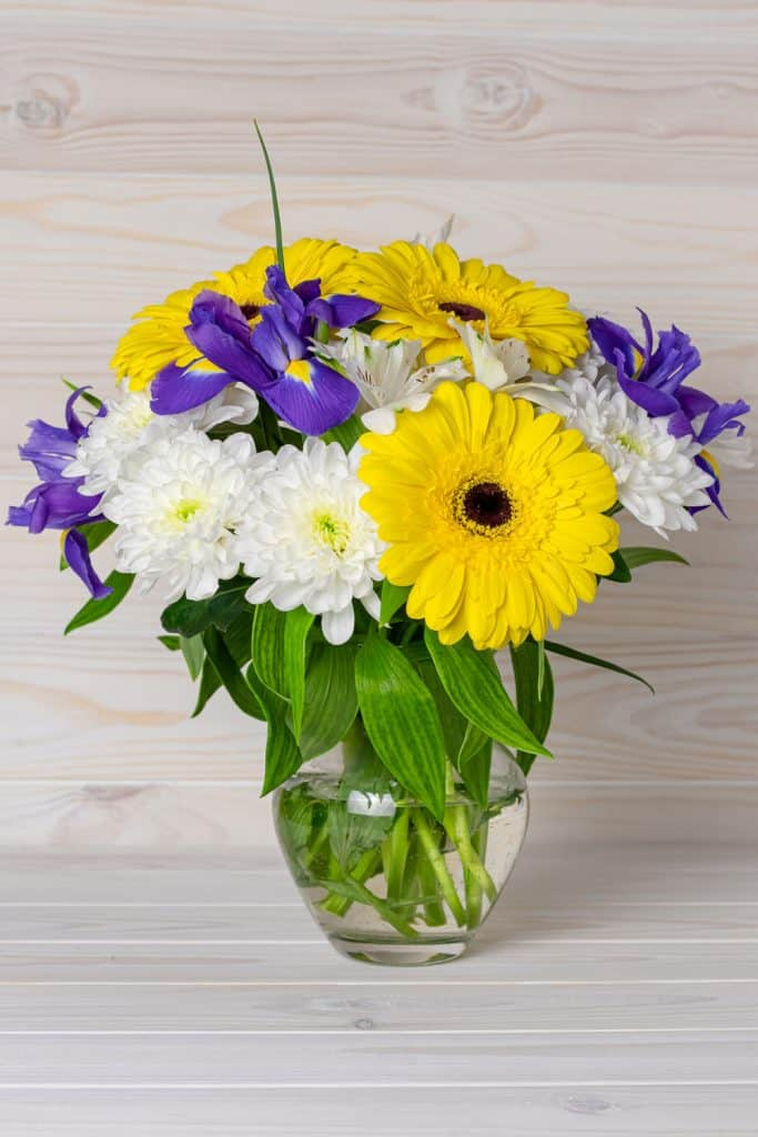 Arrangement of beautiful bright flowers using orchids, chrysanthemums, and yellow gerbera flowers on a glass vase