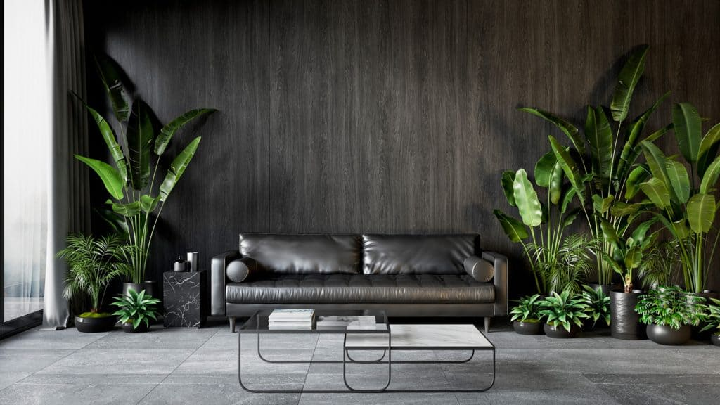 Black interior with sofa, plants and coffee table