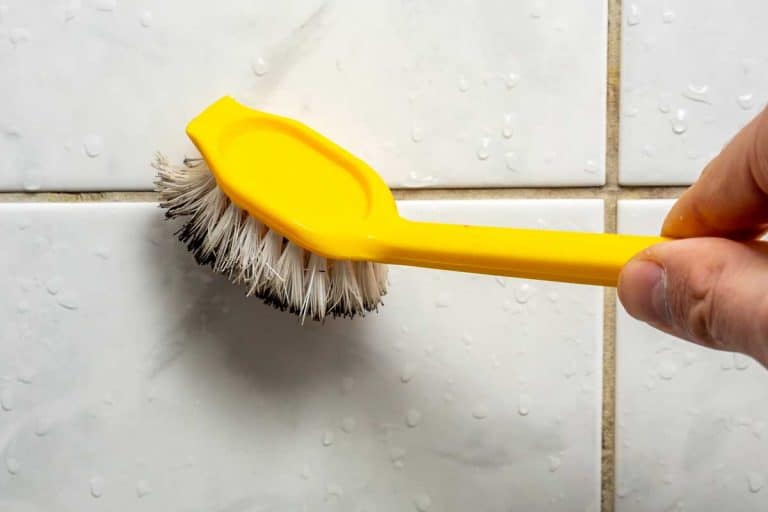 Cleaning the joint mold on the tiles, What Is The Best Brush To Clean Grout?[7 Great Brushes To Consider]