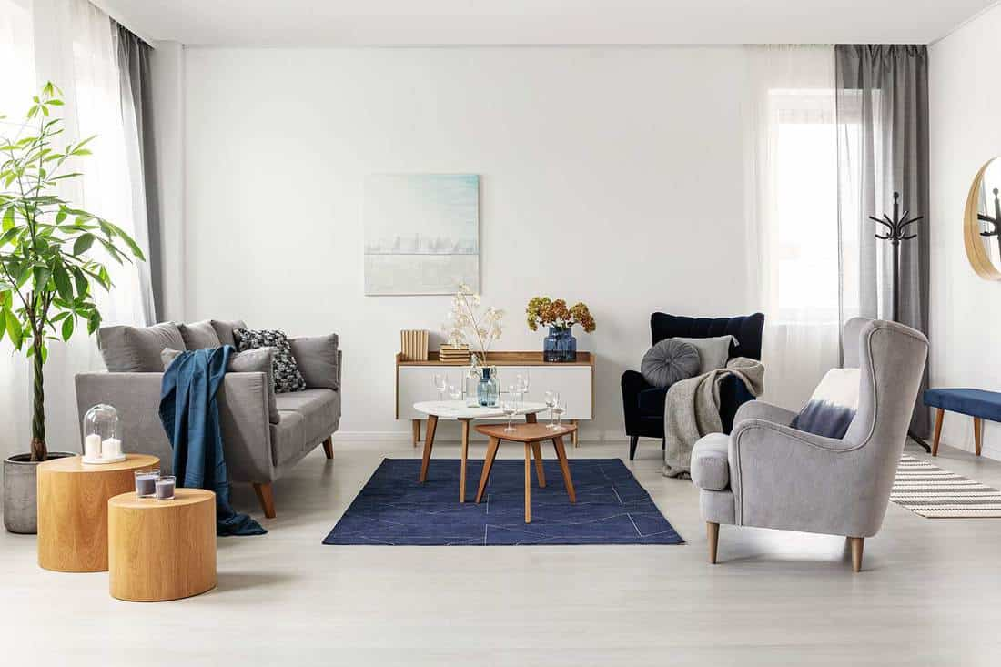 Gray and navy blue living room interior with comfortable sofa and armchairs