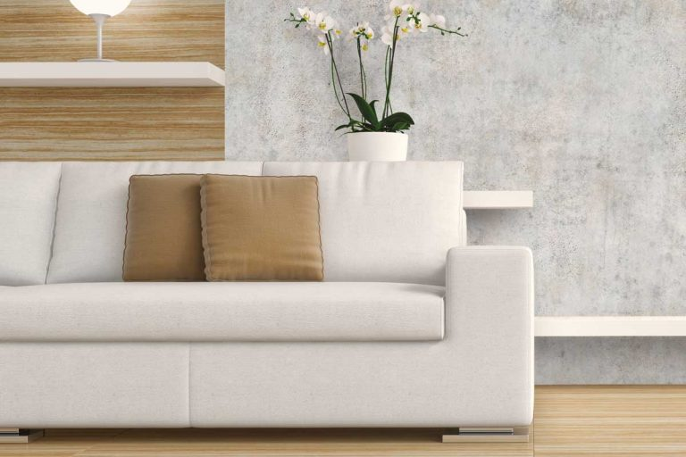 Living room interior with sofa and decoration on hardwood floor in front of gray plaster wall, White Sofa Living Room Ideas [11 Color Schemes Explored]