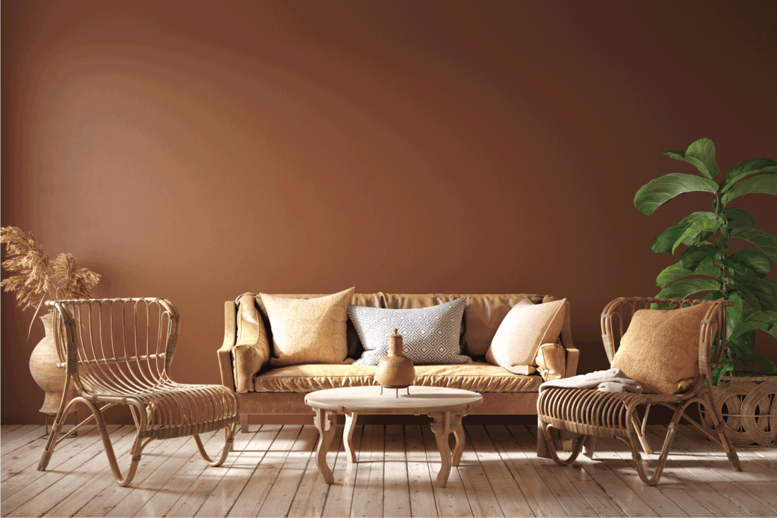 Modern interior in terracotta color with leather sofa, rattan armchairs and flower
