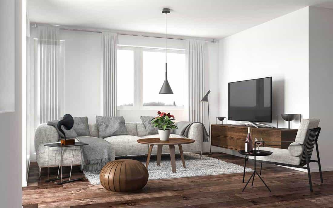 Modern living room interior with hardwood floors