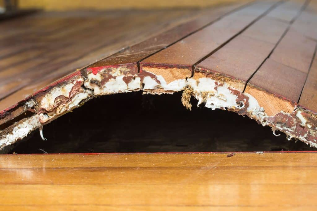 A damage flooring due to moist or water leakage on the flooring