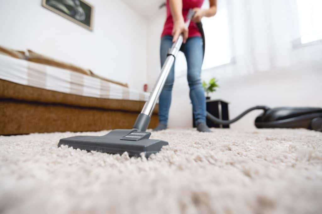 A woman cleaning the carpet using a steam cleaner