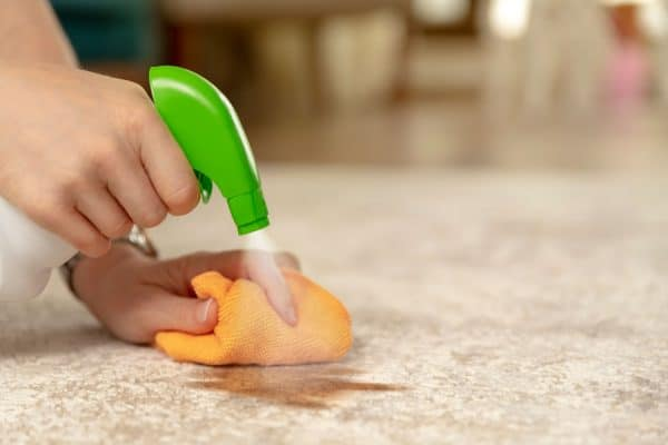 Read more about the article How To Make A Natural Carpet Deodorizer?