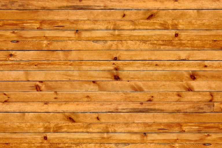 An up close and detailed photo of Knotty pine wall