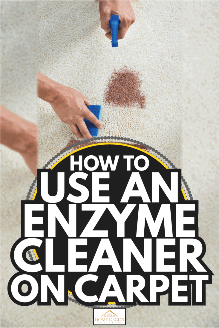 Cropped image of man cleaning stain on carpet with sponge. How To Use An Enzyme Cleaner On Carpet
