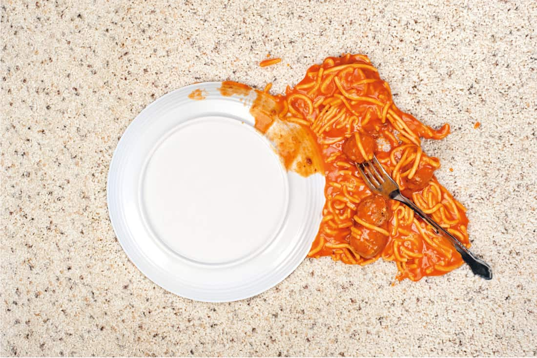Dropped plate of spaghetti on carpet. How To Use An Enzyme Cleaner On Carpet