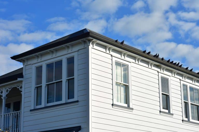 Gray wooden siding of a ranch style house with white painted window frames, Should You Caulk Wood Siding? [And How To]