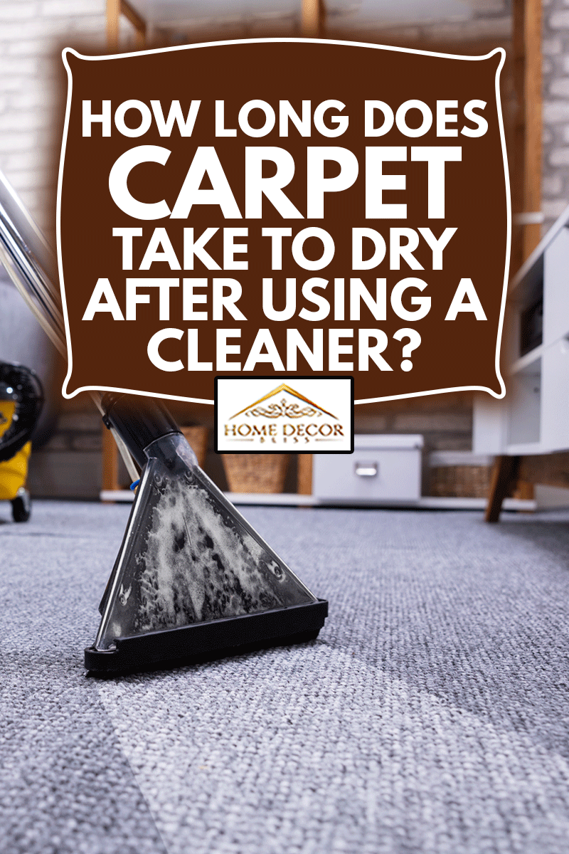 Human Cleaning Carpet In The Living Room Using Vacuum Cleaner At Home, How Long Does Carpet Take To Dry After Using A Cleaner?