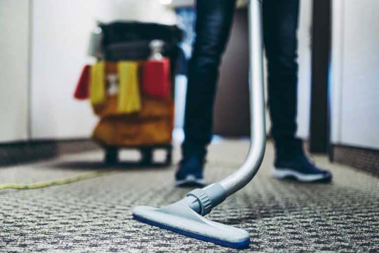 Janitor vacuum cleaning the carpet inside a hotel building, Does Carpet Cleaner Kill Bugs?