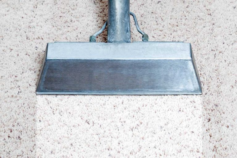 Man cleaning carpet of a home, How Often Should You Wash Your Carpet?