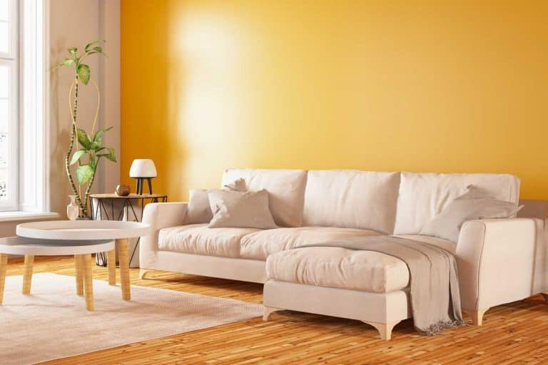Modern interior design sectional sofa with yellow wall, What Color Furniture Goes With Yellow Walls?