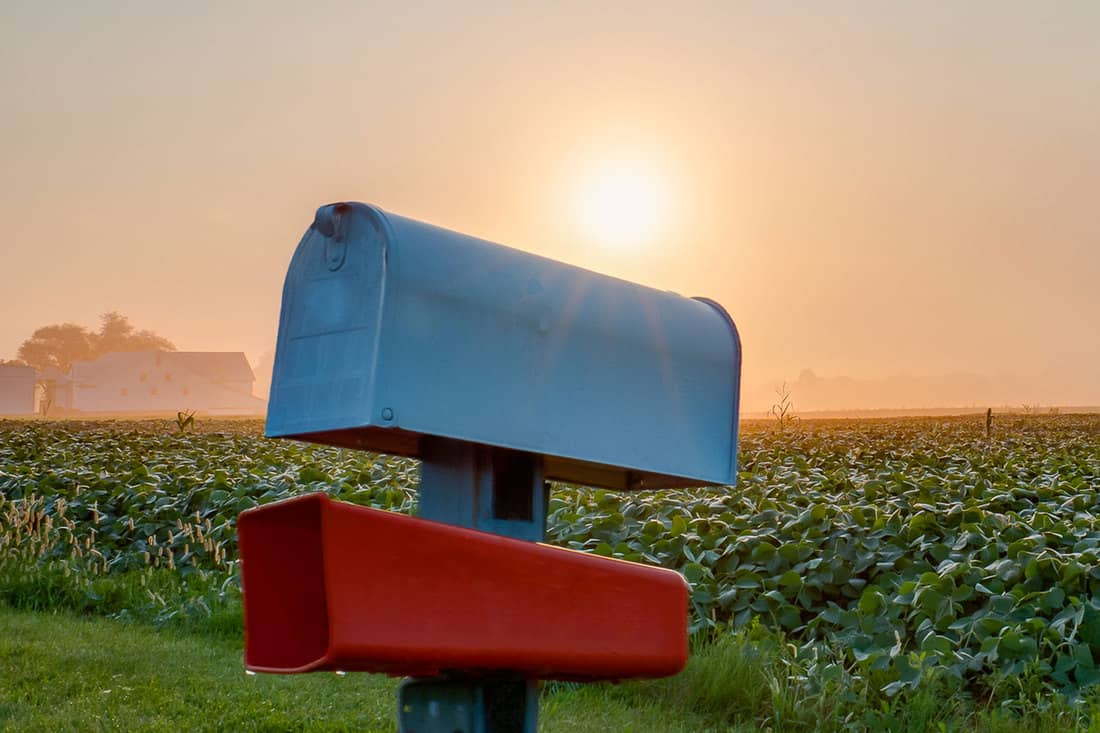 White mailbox with orange newspaper holder on post with farm field and morning sun in background, What Color Should A Mailbox Be?